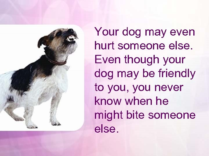 Your dog may even hurt someone else. Even though your dog may be friendly