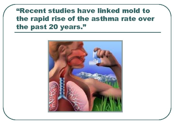 """""""Recent studies have linked mold to the rapid rise of the asthma rate over"""