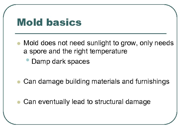 Mold basics l Mold does not need sunlight to grow, only needs a spore