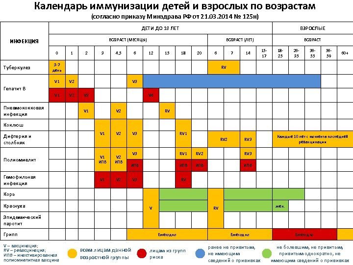 Календарь иммунизации детей и взрослых по возрастам (согласно приказу Минздрава РФ от 21. 03.