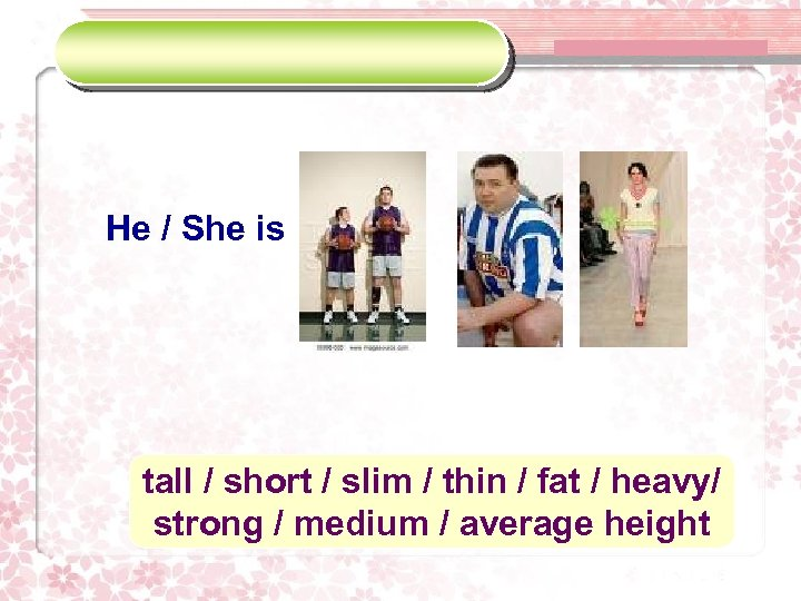 He / She is tall / short / slim / thin / fat /