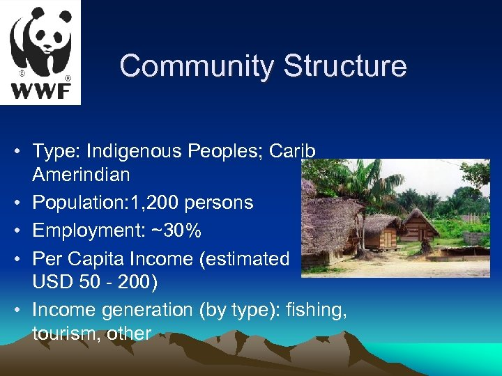 Community Structure • Type: Indigenous Peoples; Carib Amerindian • Population: 1, 200 persons •