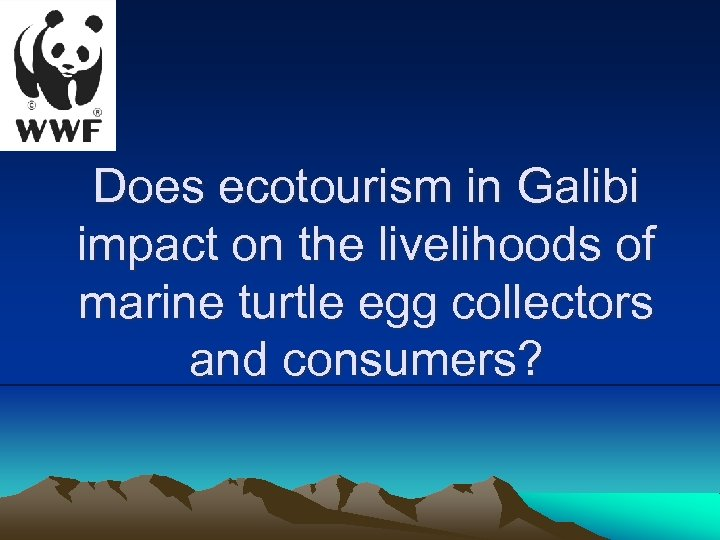 Does ecotourism in Galibi impact on the livelihoods of marine turtle egg collectors and
