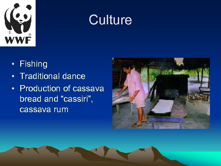 "Culture • Fishing • Traditional dance • Production of cassava bread and ""cassiri"", cassava"