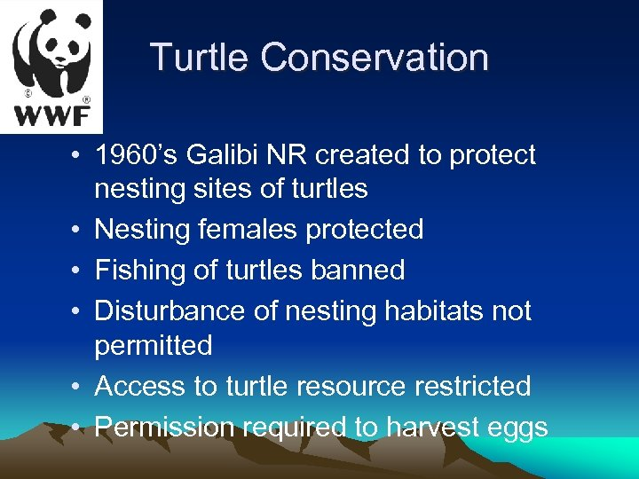 Turtle Conservation • 1960's Galibi NR created to protect nesting sites of turtles •
