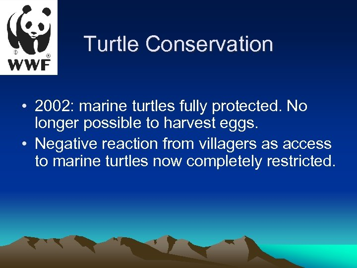 Turtle Conservation • 2002: marine turtles fully protected. No longer possible to harvest eggs.