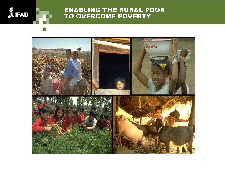 ENABLING THE RURAL POOR TO OVERCOME POVERTY 7