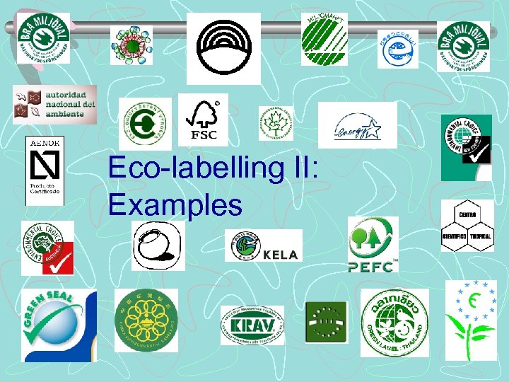 Eco-labelling II: Examples