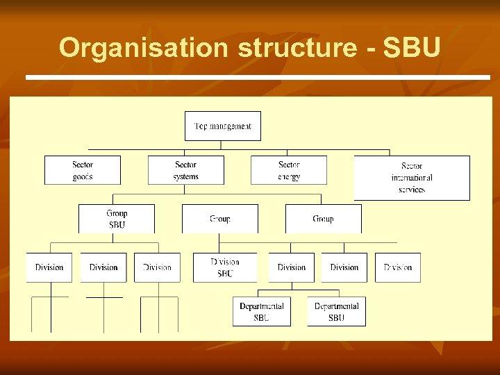 Organisation structure - SBU
