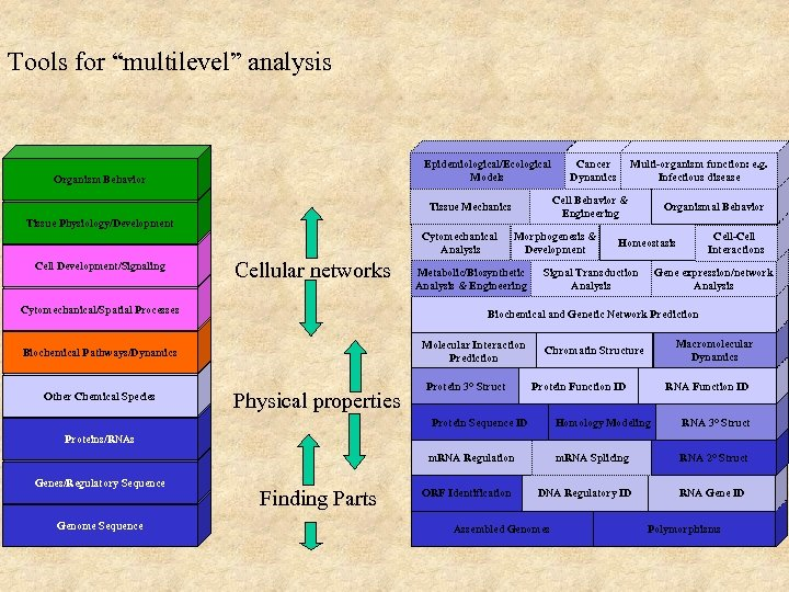 """Tools for """"multilevel"""" analysis Epidemiological/Ecological Models Organism Behavior Tissue Physiology/Development Cell Development/Signaling Cellular networks"""
