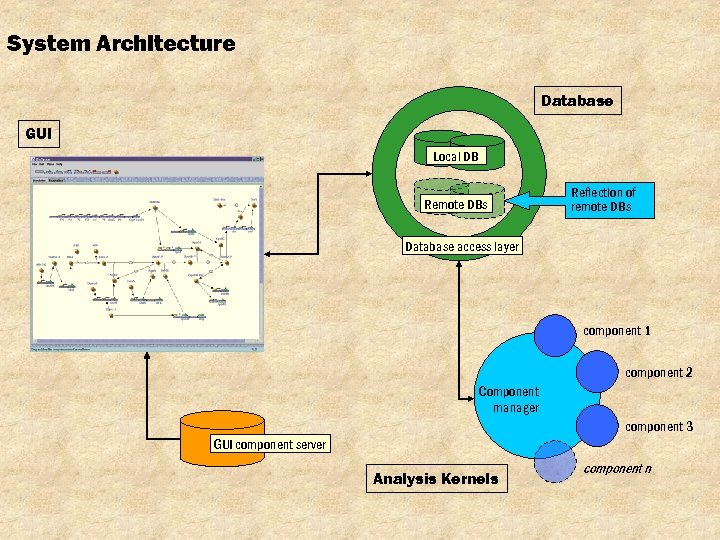 System Architecture Database GUI Local DB Remote DBs Reflection of remote DBs Database access