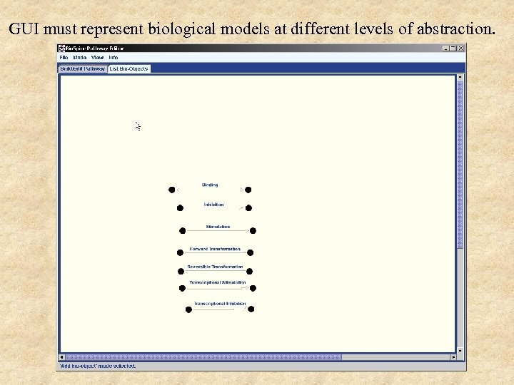 GUI must represent biological models at different levels of abstraction.