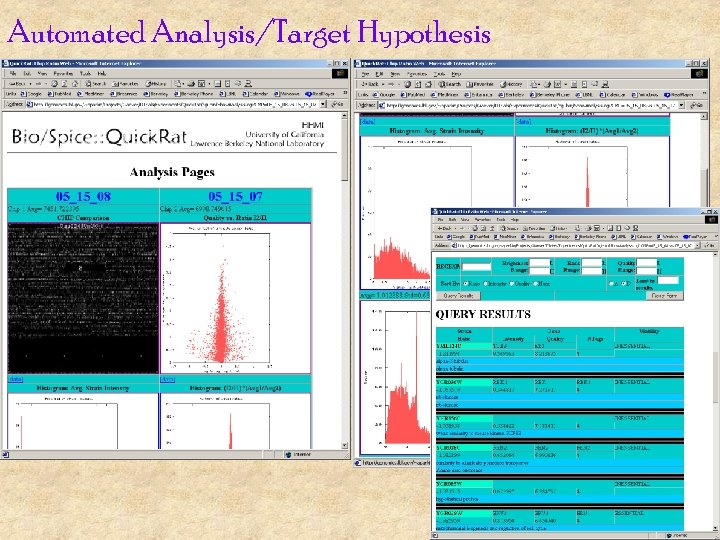 Automated Analysis/Target Hypothesis