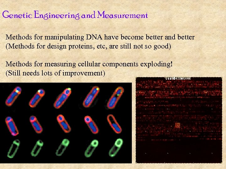 Genetic Engineering and Measurement Methods for manipulating DNA have become better and better (Methods