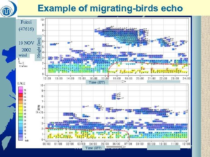 Example of migrating-birds echo Fukui 19 NOV 2002 wind Height (km) (47616) Time (JST)