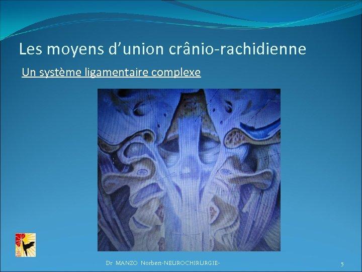 Les moyens d'union crânio-rachidienne Un système ligamentaire complexe Dr MANZO Norbert-NEUROCHIRURGIE- 5