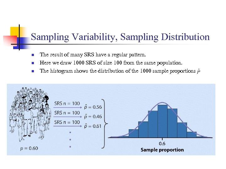 Sampling Variability, Sampling Distribution n The result of many SRS have a regular pattern.