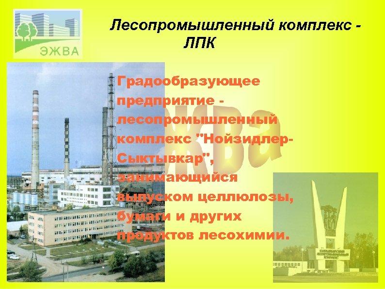 Лесопромышленный комплекс ЛПК Градообразующее предприятие лесопромышленный комплекс