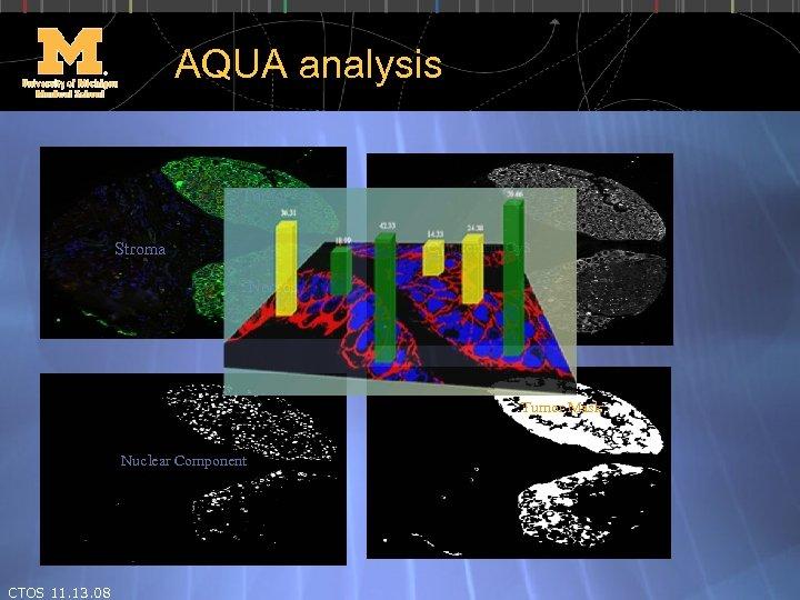AQUA analysis Tumor Cytokeratin Cy 3 Stroma Necrosis Tumor Mask Nuclear Component CTOS 11.