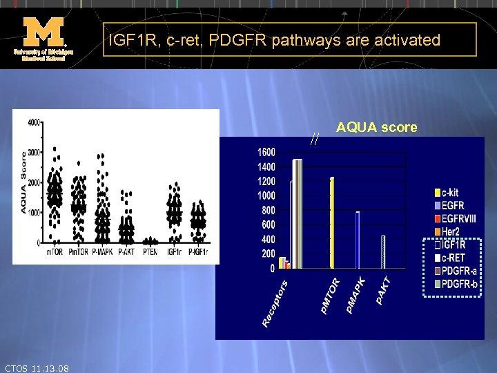 IGF 1 R, c-ret, PDGFR pathways are activated AQUA score CTOS 11. 13. 08