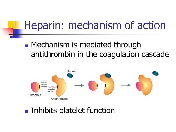 Heparin: mechanism of action n n Mechanism is mediated through antithrombin in the coagulation