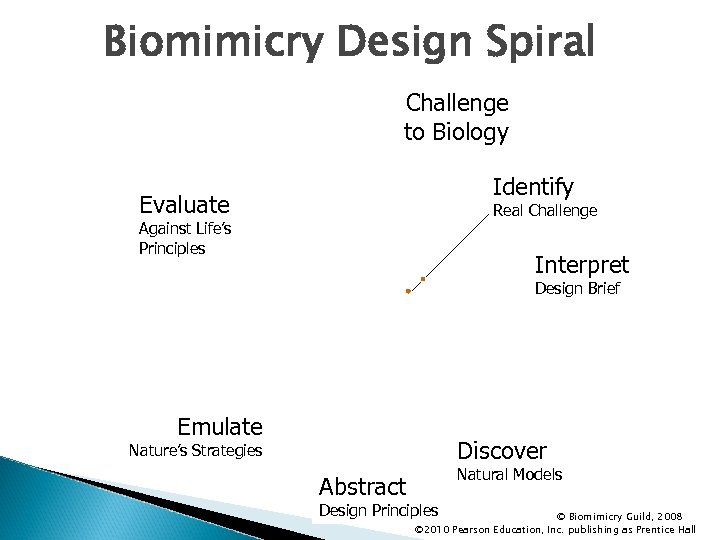 Biomimicry Design Spiral Challenge to Biology Identify Evaluate Real Challenge Against Life's Principles Interpret