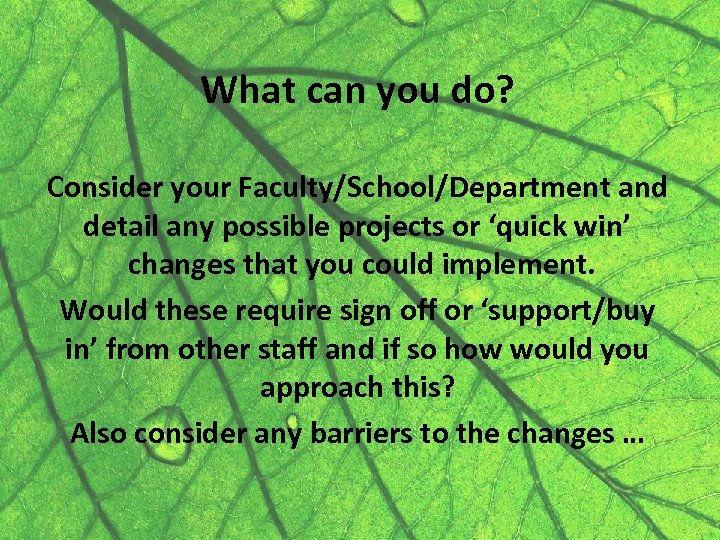 What can you do? Consider your Faculty/School/Department and detail any possible projects or 'quick