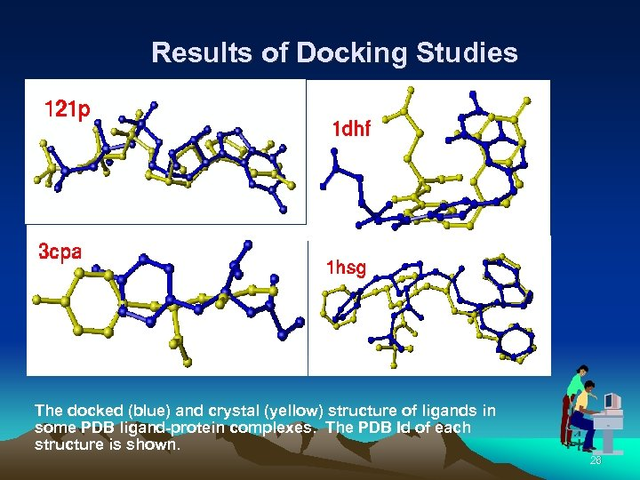 Results of Docking Studies The docked (blue) and crystal (yellow) structure of ligands in