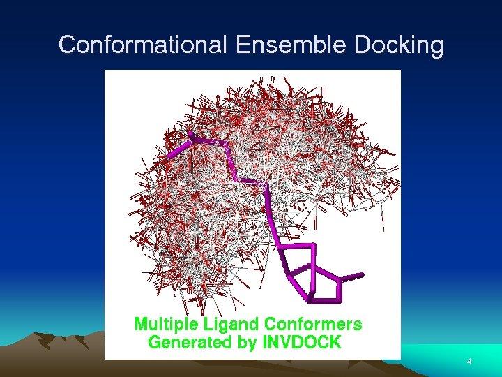 Conformational Ensemble Docking 4