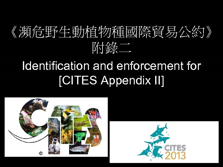 《瀕危野生動植物種國際貿易公約》 附錄二 Identification and enforcement for [CITES Appendix II]