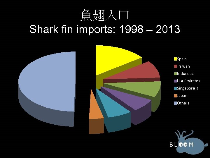 魚翅入口 Shark fin imports: 1998 – 2013 Spain Taiwan Indonesia U A Emirates Singapore