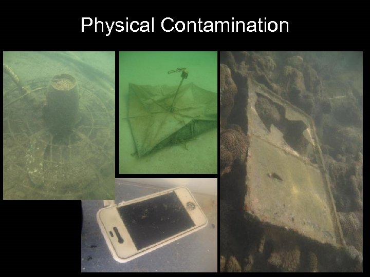 Physical Contamination