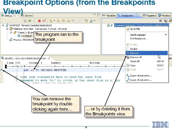 Breakpoint Options (from the Breakpoints View) The program ran to the breakpoint You can