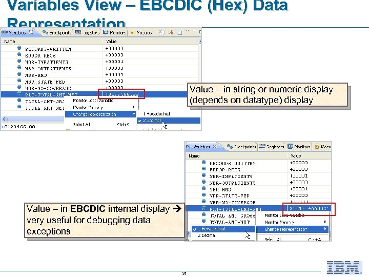 Variables View – EBCDIC (Hex) Data Representation Value – in string or numeric display