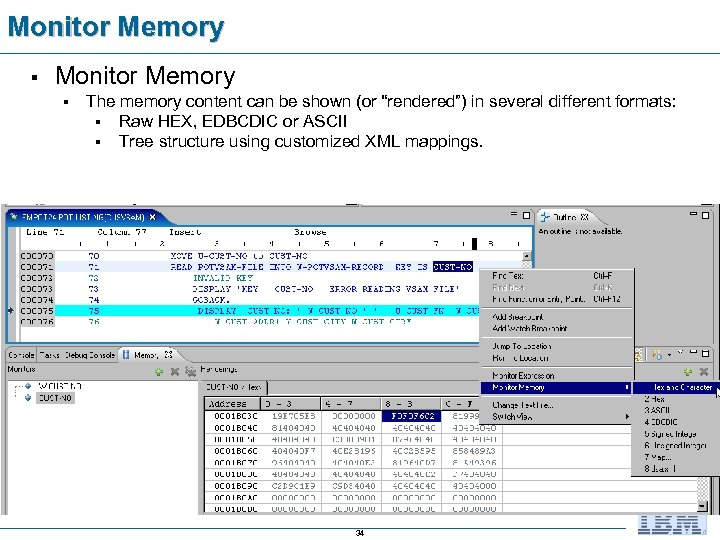 "Monitor Memory § The memory content can be shown (or ""rendered"") in several different"