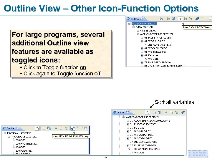 Outline View – Other Icon-Function Options For large programs, several additional Outline view features
