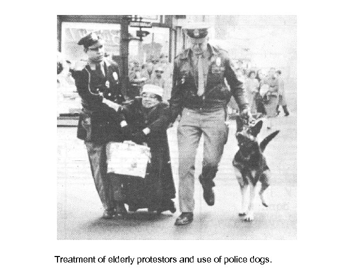 Treatment of elderly protestors and use of police dogs.