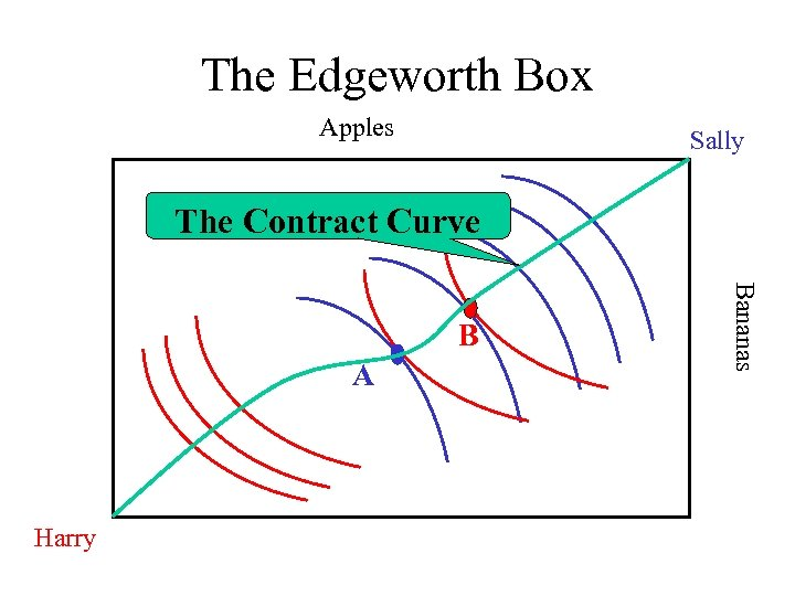 The Edgeworth Box Apples Sally The Contract Curve A Harry Bananas B