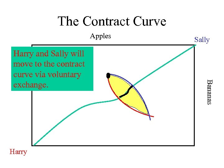 The Contract Curve Apples Harry Bananas Harry and Sally will move to the contract