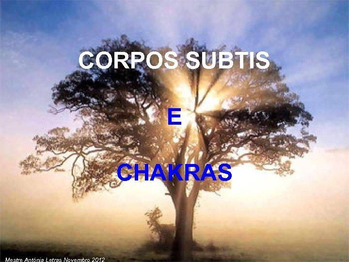 CORPOS SUBTIS E CHAKRAS Mestre Antónia Letras Novembro 2012