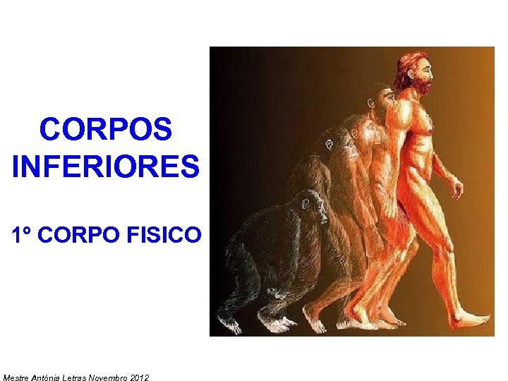 CORPOS INFERIORES 1º CORPO FISICO Mestre Antónia Letras Novembro 2012