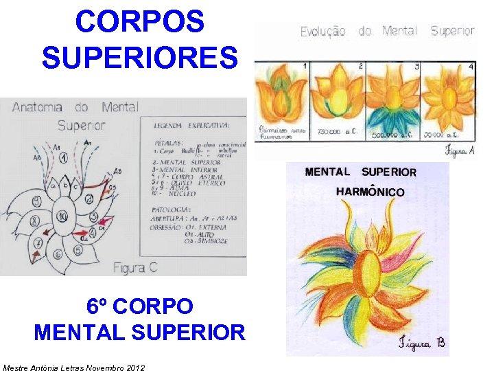 CORPOS SUPERIORES 6º CORPO MENTAL SUPERIOR Mestre Antónia Letras Novembro 2012