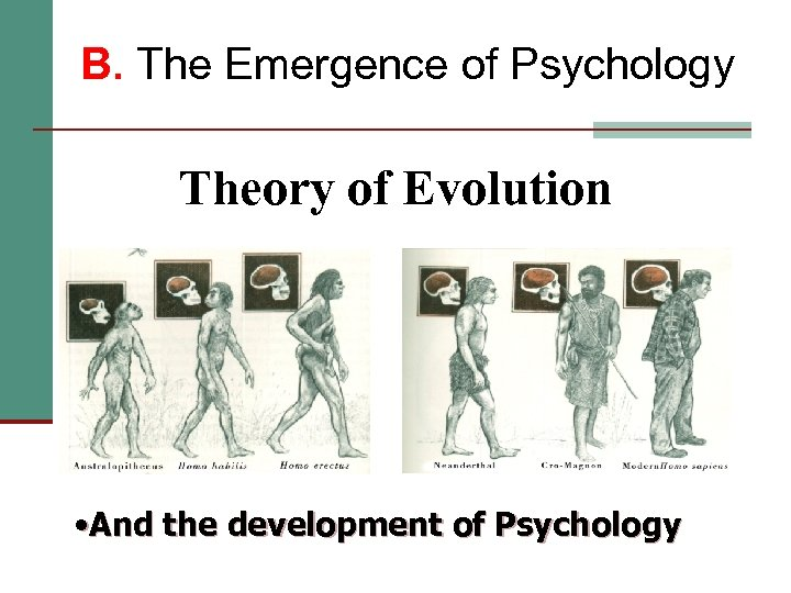 B. The Emergence of Psychology Theory of Evolution • And the development of Psychology