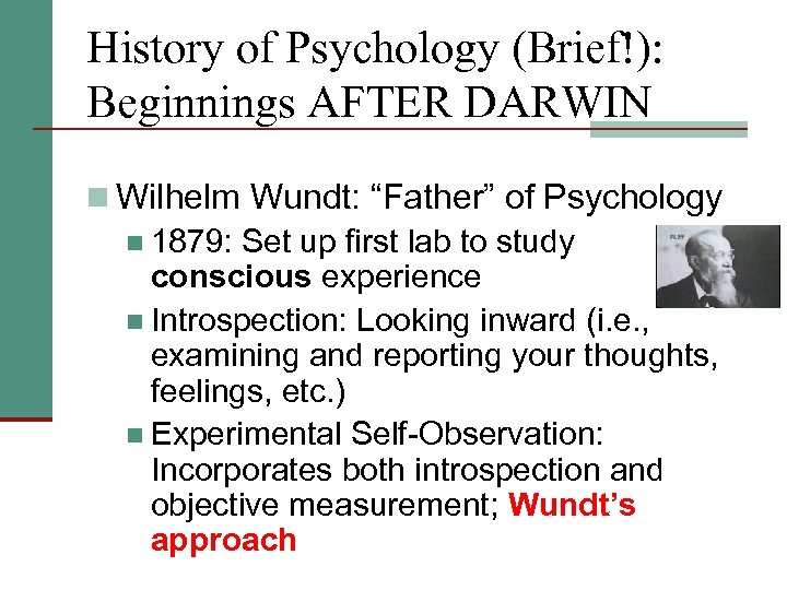 """History of Psychology (Brief!): Beginnings AFTER DARWIN n Wilhelm Wundt: """"Father"""" of Psychology n"""