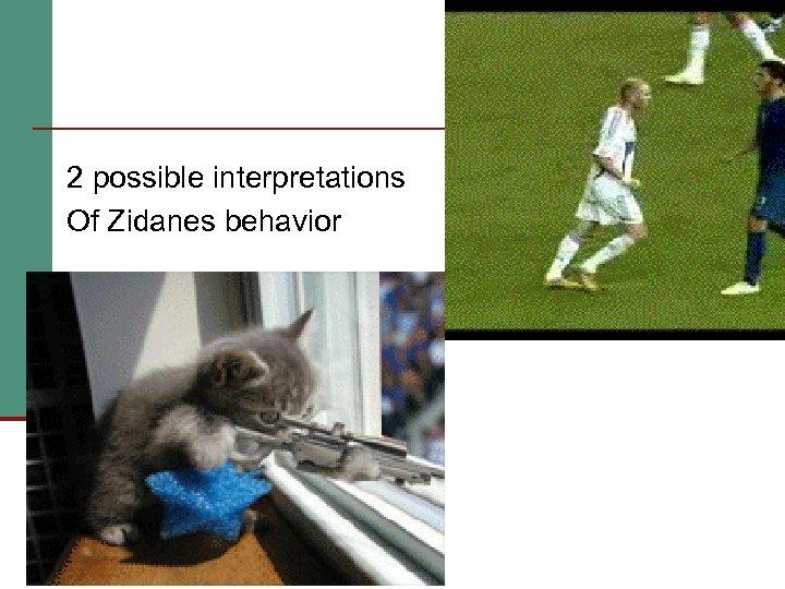 2 possible interpretations Of Zidanes behavior