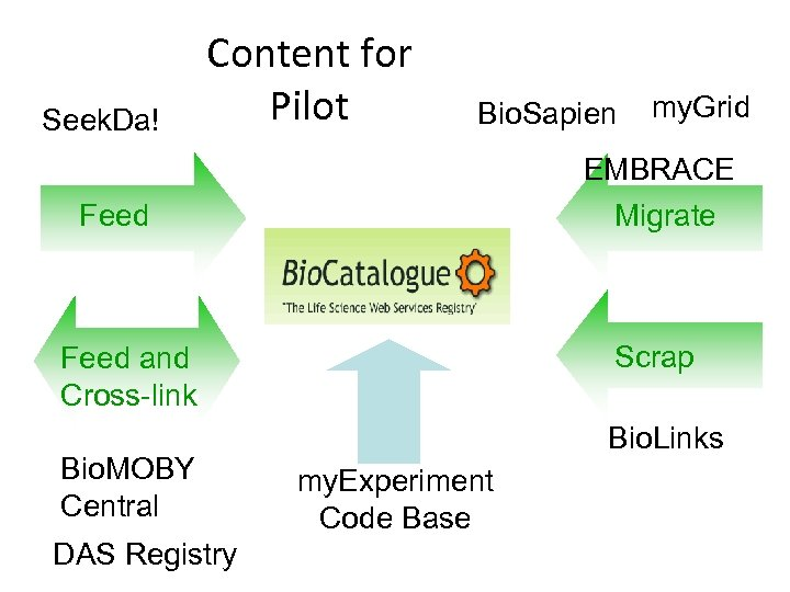 Seek. Da! Content for Pilot Bio. Sapien my. Grid EMBRACE Feed Migrate Scrap Feed