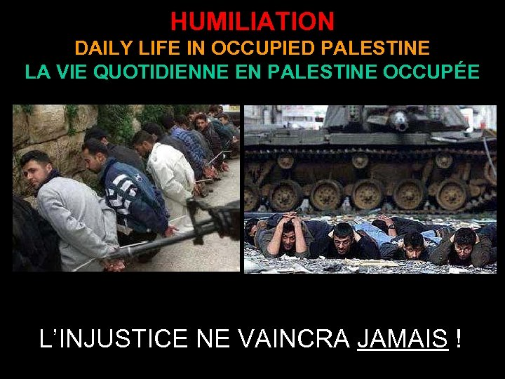HUMILIATION DAILY LIFE IN OCCUPIED PALESTINE LA VIE QUOTIDIENNE EN PALESTINE OCCUPÉE L'INJUSTICE NE