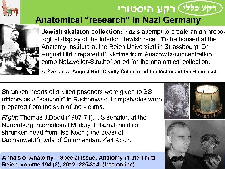 "רקע היסטורי Anatomical ""research"" in Nazi Germany Jewish skeleton collection: Nazis attempt to"