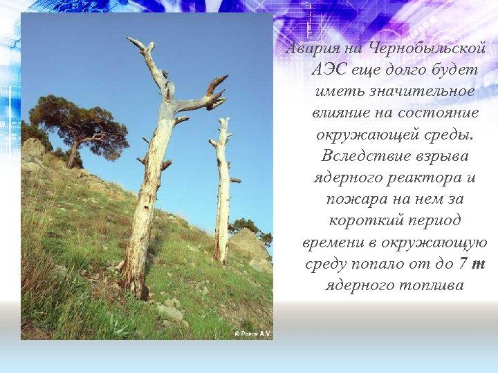 Авария на Чернобыльской АЭС еще долго будет иметь значительное влияние на состояние окружающей среды.