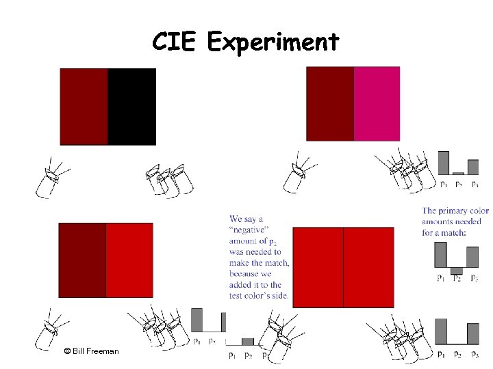 CIE Experiment 782 © Bill Freeman